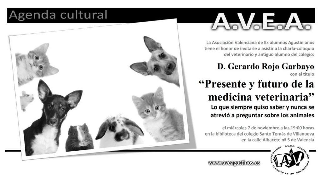 conferencia Gerardo Rojo